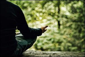 Mindfulness in de natuur bos en strand powered by Het Centrum van Zijn